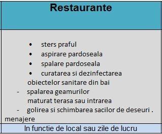 curatenie restaurant deva